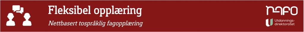 banner Fleksibel opplæring