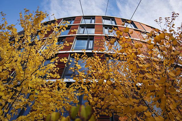 fasade av et bygg med trær i høstfarger foran.