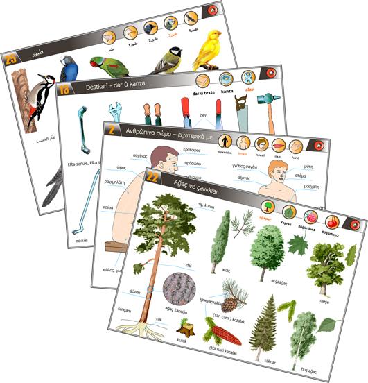 Illustrasjonsbilde av noen temaer i Bildetema